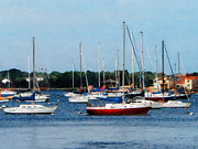 Rhode Island Prints - Boat - Group of Sailboats Newport RI Print by Susan Savad