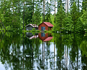 Tree Reflection Posters - Boat house on Swedish lake Poster by Micah May
