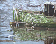 Waterfowl Framed Prints - Boat Wreck With Sea Birds Framed Print by Martin Davey