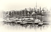 Sailboats In Water Prints - Boats and Cottages in b/w Print by Greg Jackson