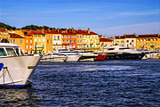 Row Boat Prints - Boats at St.Tropez harbor Print by Elena Elisseeva