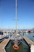 Sail Boats Prints - Boats at The San Francisco Pier 39 Docks 5D25975 Print by Wingsdomain Art and Photography