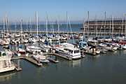 Sail Boats Prints - Boats at The San Francisco Pier 39 Docks 5D25999 Print by Wingsdomain Art and Photography