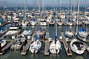 Sail Boats Prints - Boats at The San Francisco Pier 39 Docks 5D26009 Print by Wingsdomain Art and Photography