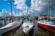 Docked Sailboat Posters - Boats in Marina Saint Petersburg Florida Poster by Amy Cicconi