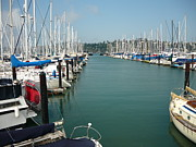Sausalito Metal Prints - Boats in sausalito Metal Print by Linda Aiassa