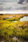 Lisa McStamp - Boats on the Marsh