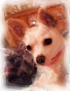 Dog Art Of Chihuahua Framed Prints - Bobby McGee 2 Framed Print by Ruby Cross