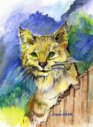 Bobcat Paintings - Bobcat by Pamee Hohner