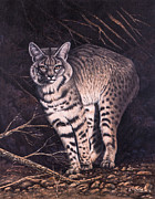 Desert Wildlife Paintings - Bobcat by Ricardo Chavez-Mendez