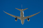 Aviation Photos - Boeing Dreamliner by Puget  Exposure