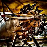 Boeing Model 100 Print by David Patterson