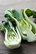Wooden Prints - Bok choy Print by Elena Elisseeva