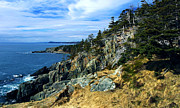 Quoddy Photography Posters - Bold Coast in Fall Poster by ABeautifulSky  Photography