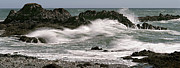 Maine Photographs Prints - Bold Coast Tidal Surge Print by Marty Saccone