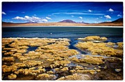 Bolivia Blog Prints - Bolivia Deser Lagoon Framed Print by For Ninety One Days