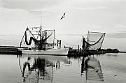 Shrimp Boat Prints - Bon Temps Print by Scott Pellegrin