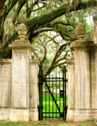 Featured Art Prints - BONAVENTURE CEMETERY Savannah GA Print by William Dey