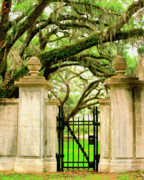 Savannah Architecture Posters - BONAVENTURE GATE Savannah GA Poster by William Dey