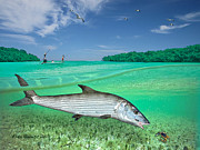 Tailing Drawings Prints - Bonefish Flat Print by Alex Suescun