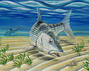 Salmon Painting Posters - Bonefish on the Flats Poster by Steve Ozment