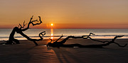 Oak Park Posters - Bones Beach Sunrise Poster by Debra and Dave Vanderlaan
