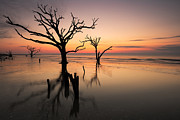 Botany Bay Plantation Posters - Boneyard Beach Sunrise Poster by Bernard Chen