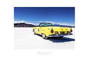 Dry Lake Racing Posters - Bonneville T-bird Poster by Holly Martin