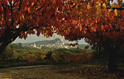 Provence Village Prints - Bonnieux in Fall Print by Robert Abramson