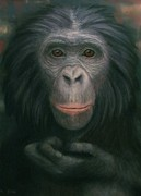 Love Making Pastels - Bonobo by Rebekah Sisk