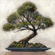 Fanciful Metal Prints - Bonsai Cedar Metal Print by Randy Wollenmann
