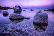 Sun Rise Prints - Bonsai Rock Print by Sean Foster
