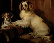 Spaniel Puppy Paintings - Bony and Var by Sir Edwin Landseer