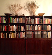Mid Century Design Originals - Bookcase in Brown by Diane Phelps