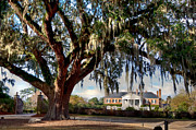 Low Country Prints - Boone Hall Mansion Print by Walt  Baker
