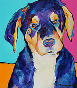 Dog Greeting Cards Framed Prints - Boone Framed Print by Pat Saunders-White