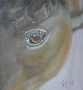 Quarter Horses Pastels - Boost My Ego by Cathy Pierce Payne
