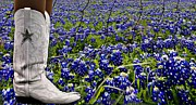Carrie OBrien Sibley - Boots and Bluebonnets