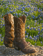 Bluebonnet Prints - Boots and Bluebonnets Print by David and Carol Kelly