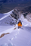 Lost River Mountains Photos - Borah Peak by Mark Weber