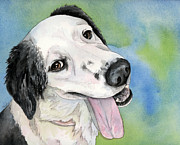Watercolor Print Posters - Border Collie Mix dog Poster by Cherilynn Wood