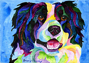 Collie Painting Framed Prints - Border Collie Framed Print by Sherry Shipley