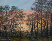 Kathleen McDermott - Border Pines