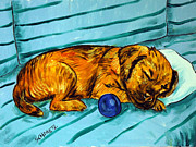 Jay Schmetz Metal Prints - Border Terrier Sleeping Metal Print by Jay  Schmetz