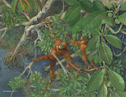 ACE Coinage painting by Michael Rothman - Bornean Orangutan