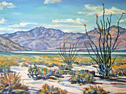 Robert Gerdes - Borrego Desert in Bloom