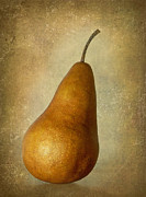 Bosc Framed Prints - Bosc Pear Framed Print by Angie Vogel