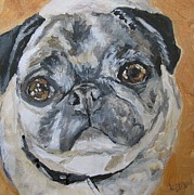 Dog Portrait Paintings - Bosco by Kellie Straw