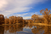 New Mexico Glass Originals - Bosque Del Apache Reflections by Mike  Dawson