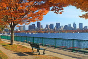 Foliage  Posters - Boston Charles River in Autumn Poster by John Burk